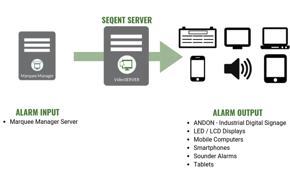Video Display and Audio Control VideoSERVER